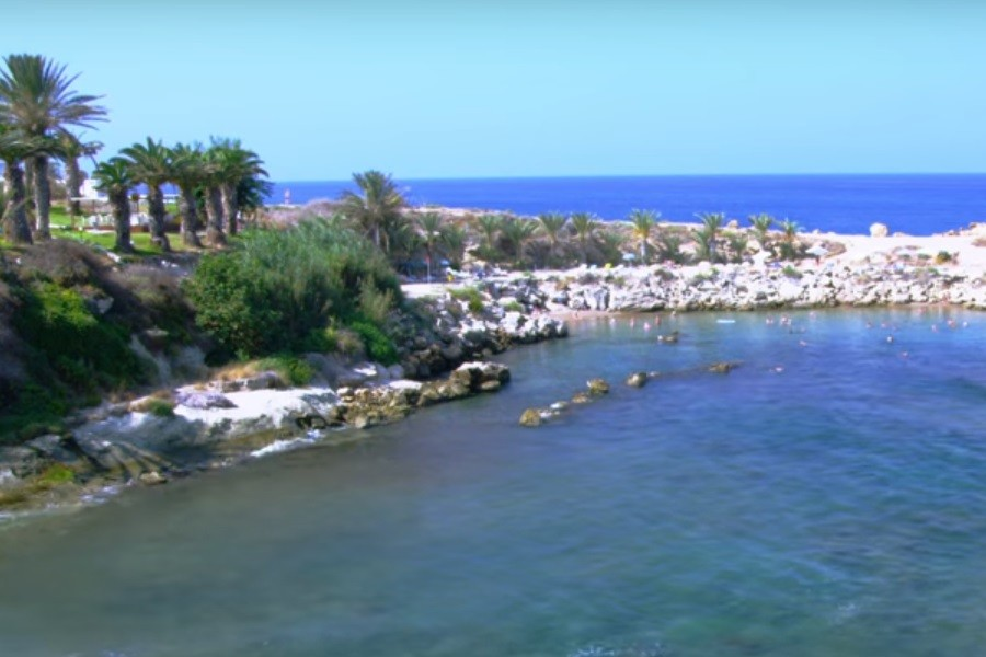 Kipr.jpg