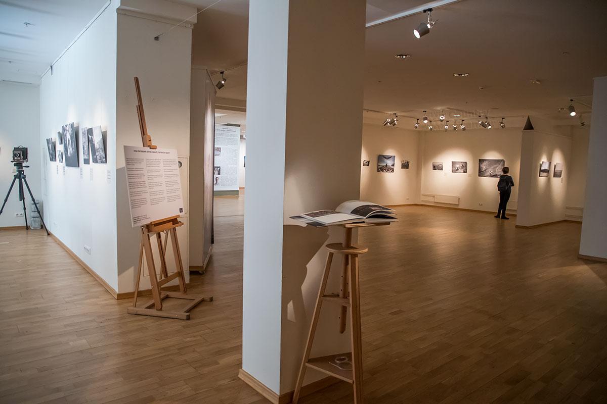 Особым образом освещена галерея классической фотографии, где вместо общих потолочных применяется четко направленные точечные светильники.