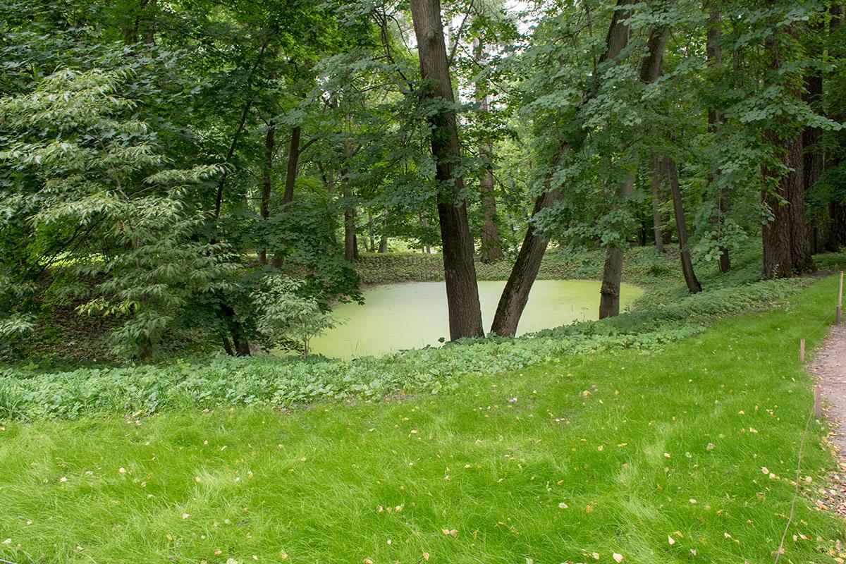 Еще старый князь Волконский построил в усадьбе Ясная Поляна каскад прудов, воздвигнув две плотины на овраге.