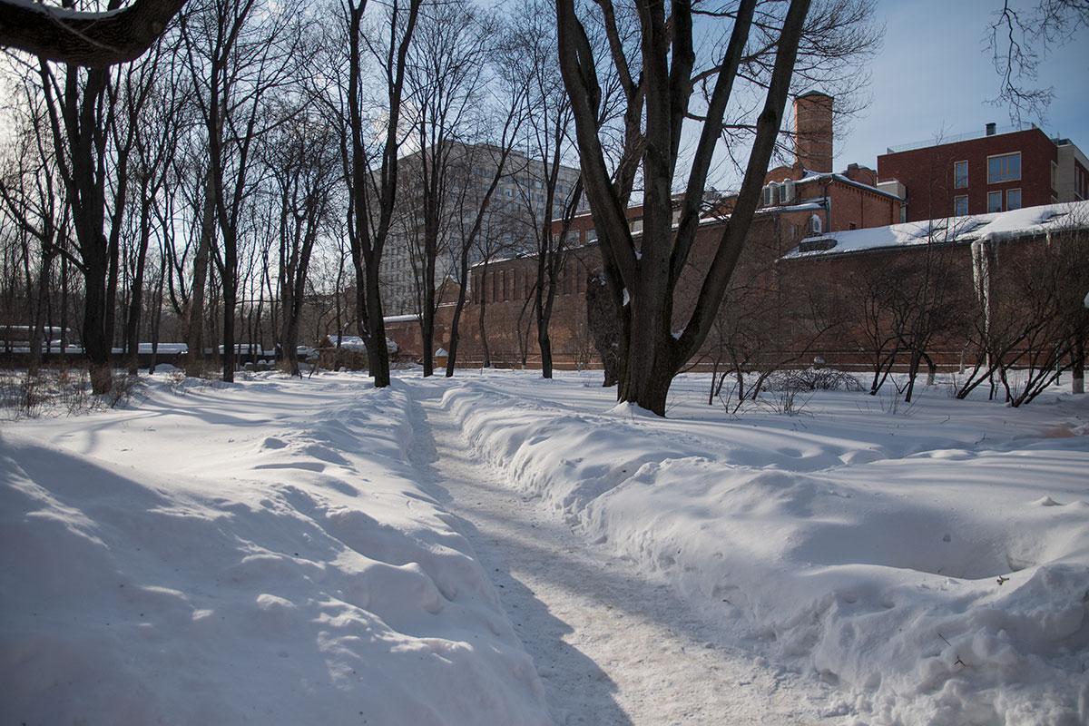 Яблоневый сад, окружающий нынешний музей Толстого в Хамовниках, придавал дому сходство с родовой усадьбой Ясная Поляна.
