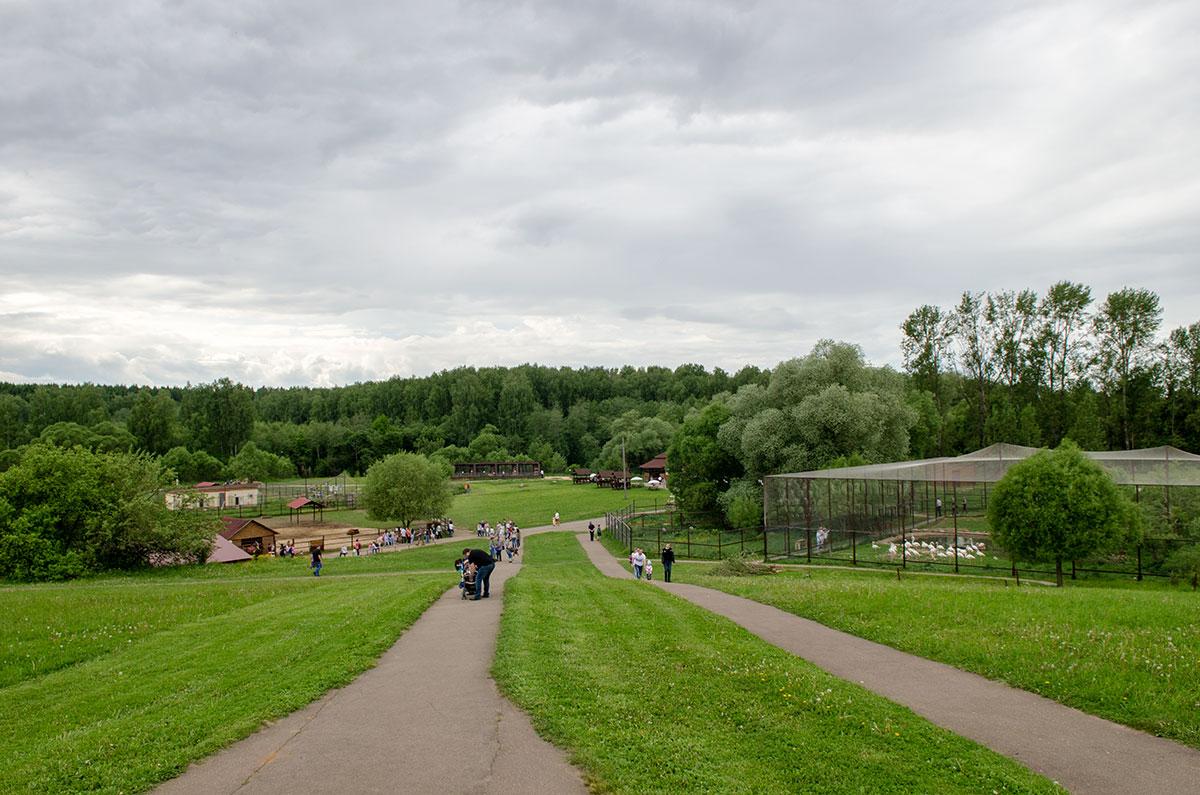 Слева от дорожек по территории парка птиц Воробьи – популярная у туристов площадка для катания на лошадях. Справа – вольер фламинго.