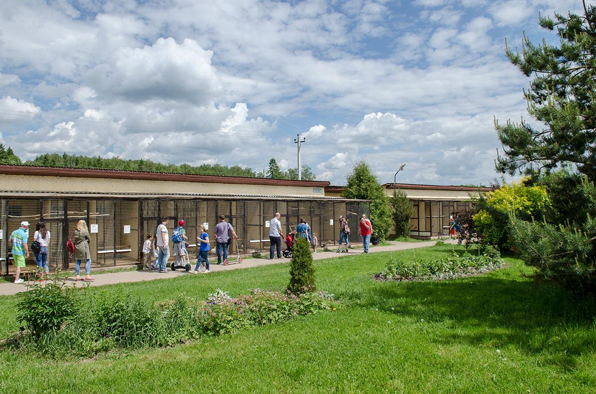 Осмотр экспозиции первой территории парка птиц Воробьи начинают с прохода вдоль вольеров, протянувшихся прямо от входа.