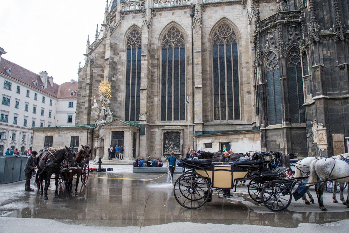 Конные повозки у стен собора Святого Стефана готовы прокатить по пешеходной зоне города всех желающих того туристов.