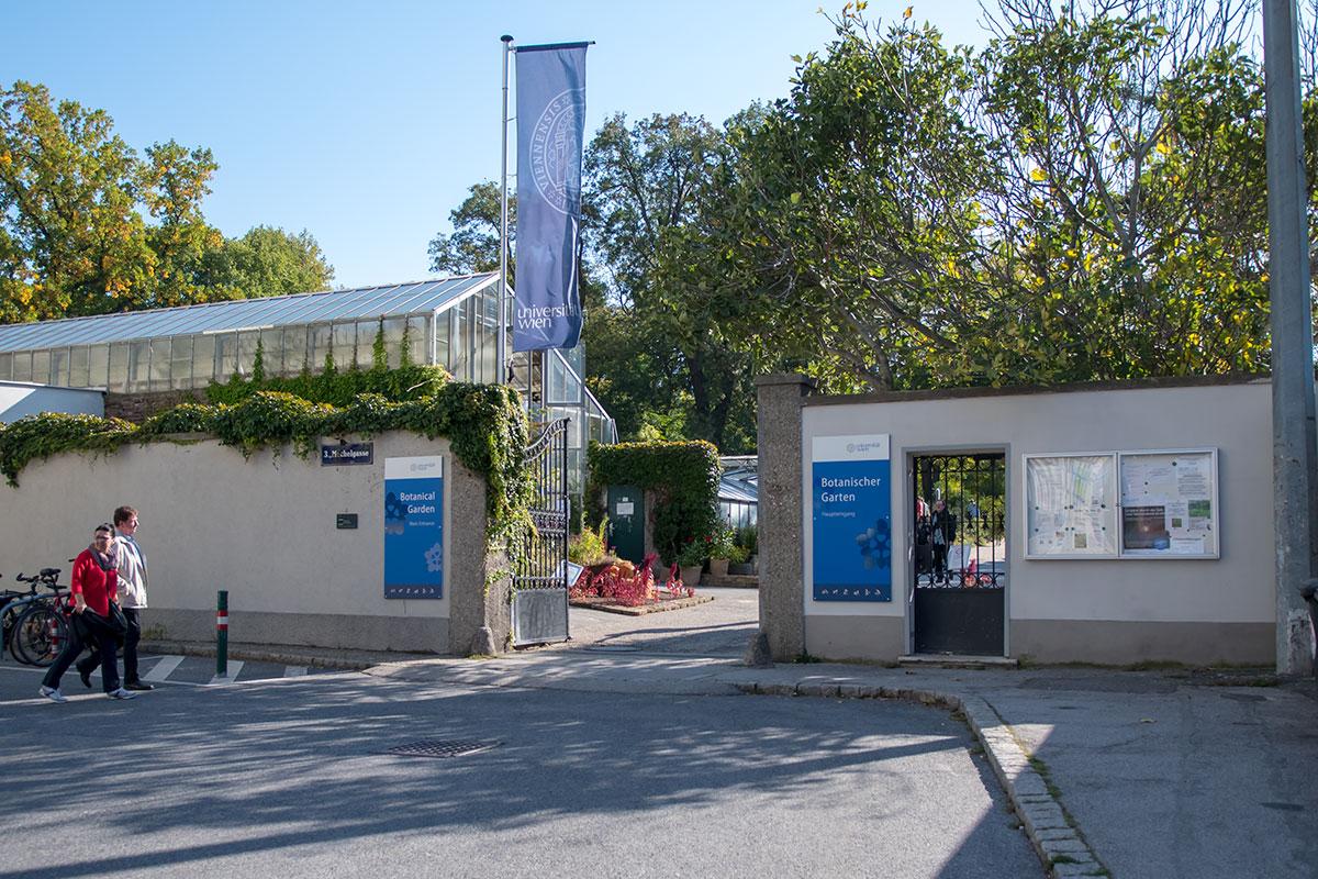 Северные ворота Ботанического сада Венского университета стали конечной точкой нашего путешествия по этому любопытному объекту, бесплатному для посещения.