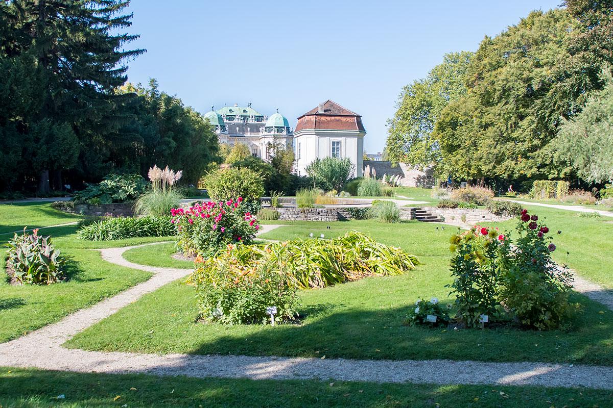 Своим ближайшим соседом Ботанический сад Венского университета имеет знаменитый дворцовый ансамбль Бельведер.