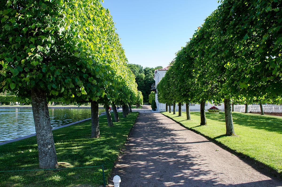 Геометрически правильные аллеи вблизи дворца Марли в Петергофе словно предназначены для наглядной демонстрации перспективы.