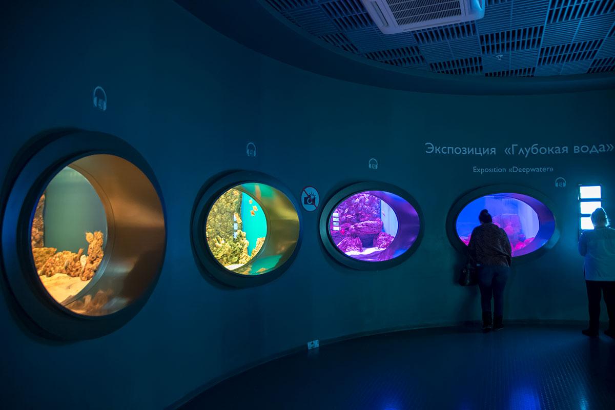 Необычна форма представления посетителям Москвариума его глубоководных обитателей, словно из иллюминаторов подводного корабля.