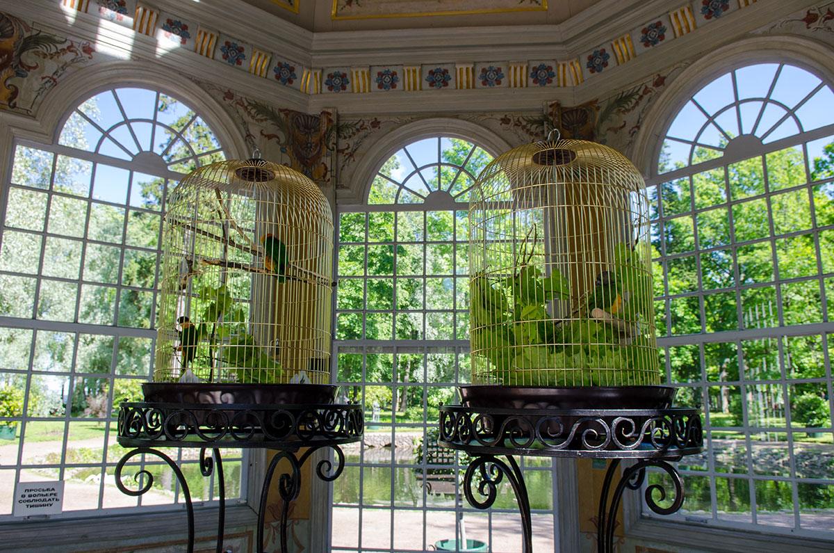 Птичьи клетки восточного павильона вольеров Петергофа изготовлены из медных прутков и позолочены, подставки выкованы из железа.