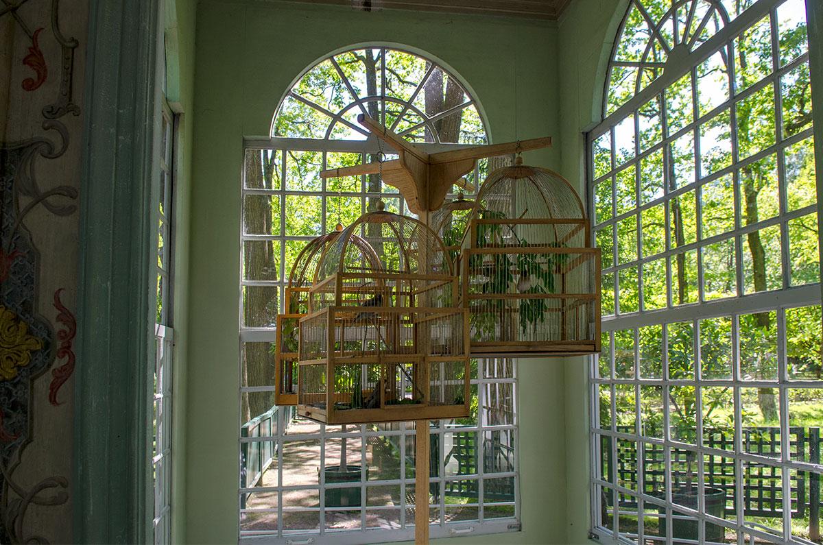 Вольеры Петергофа оборудованы обширным остеклением оконных и дверных проемов, обеспечивающим достаточную освещенность внутри.