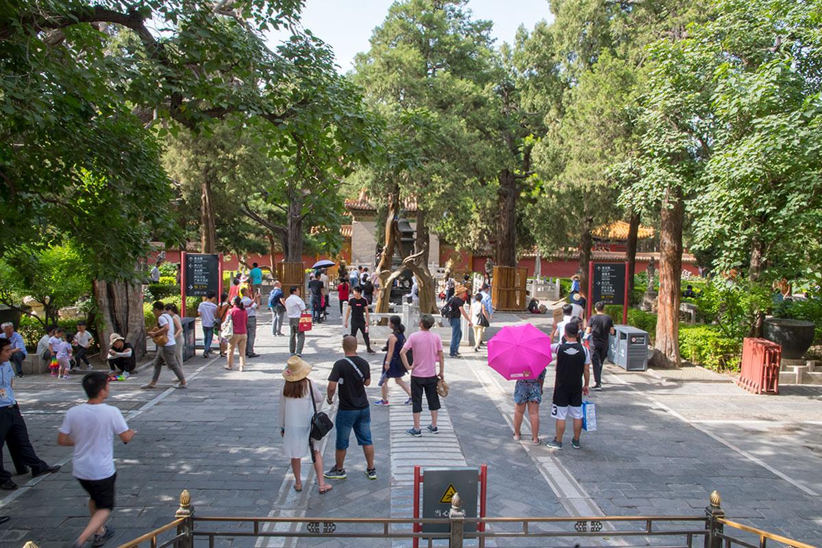 Северная часть Запретного города включает Императорский сад, немного компенсирующий отсутствие растительности на остальной территории.