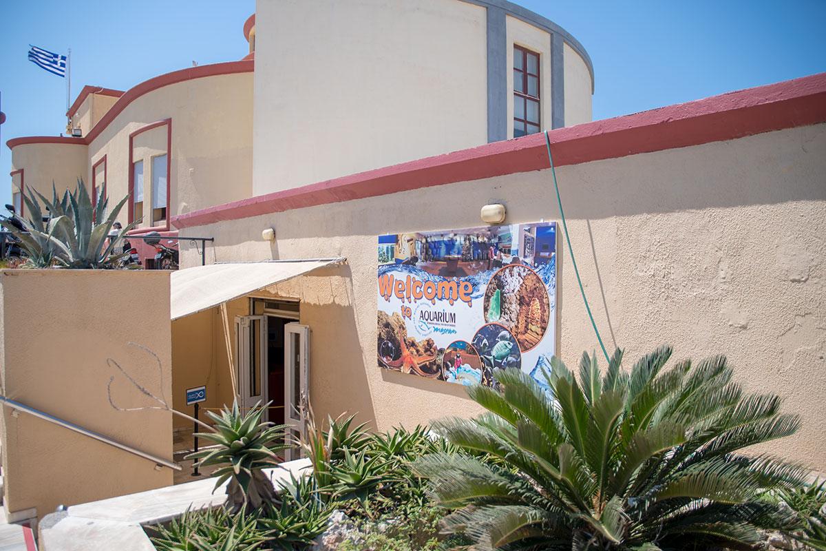 Входить в аквариум Родоса посетителям приходится через восточную дверь, обходя здание, признанное историческим памятником.