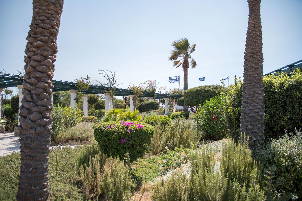 Садово-парковый комплекс современного курорта Источники Каллифеи трудно классифицировать по типу ландшафтного дизайна.
