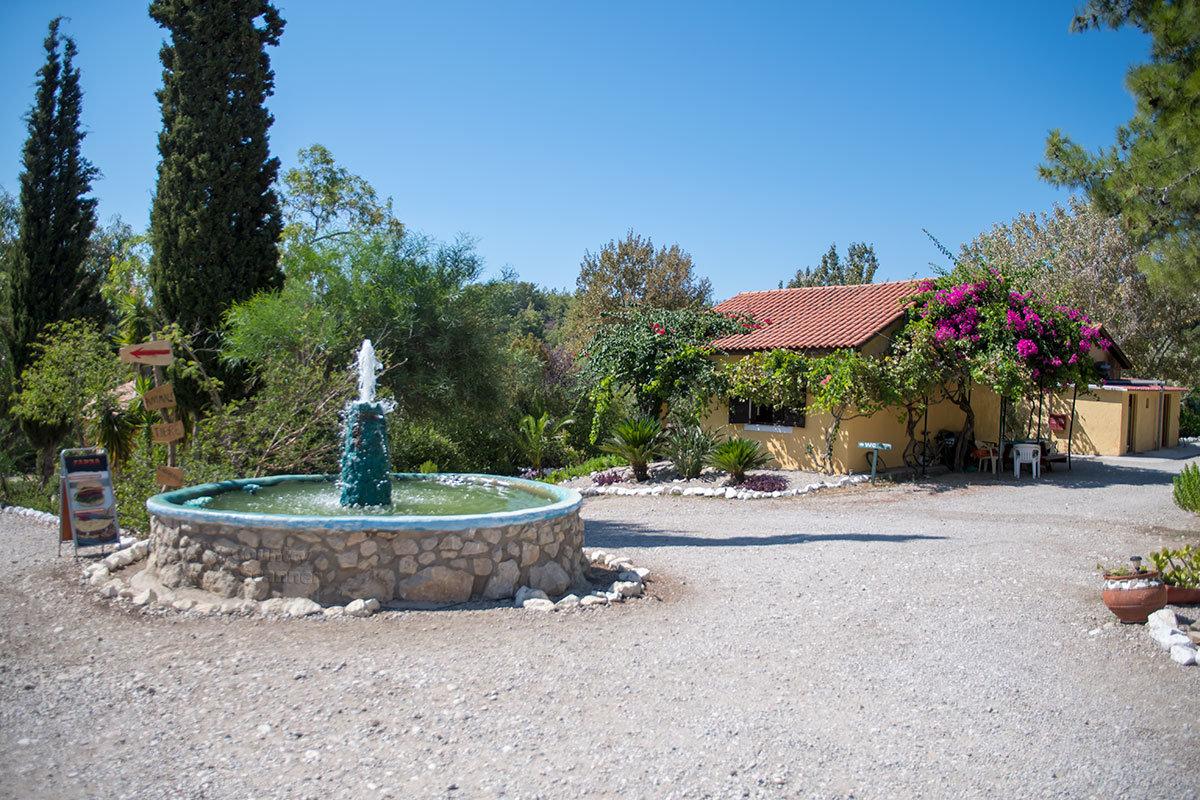 Ухоженность территории, которой отличается страусиная ферма Родоса, удивительна для зоопарка, совмещенного с сельхозпредприятием.