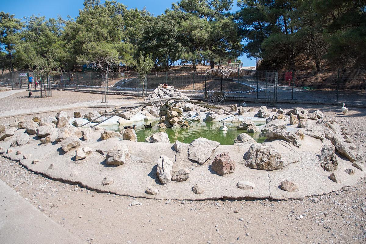 Декоративный водоем в одном из вольеров страусиной фермы Родоса с каменным гротом и недоделанным мостиком.