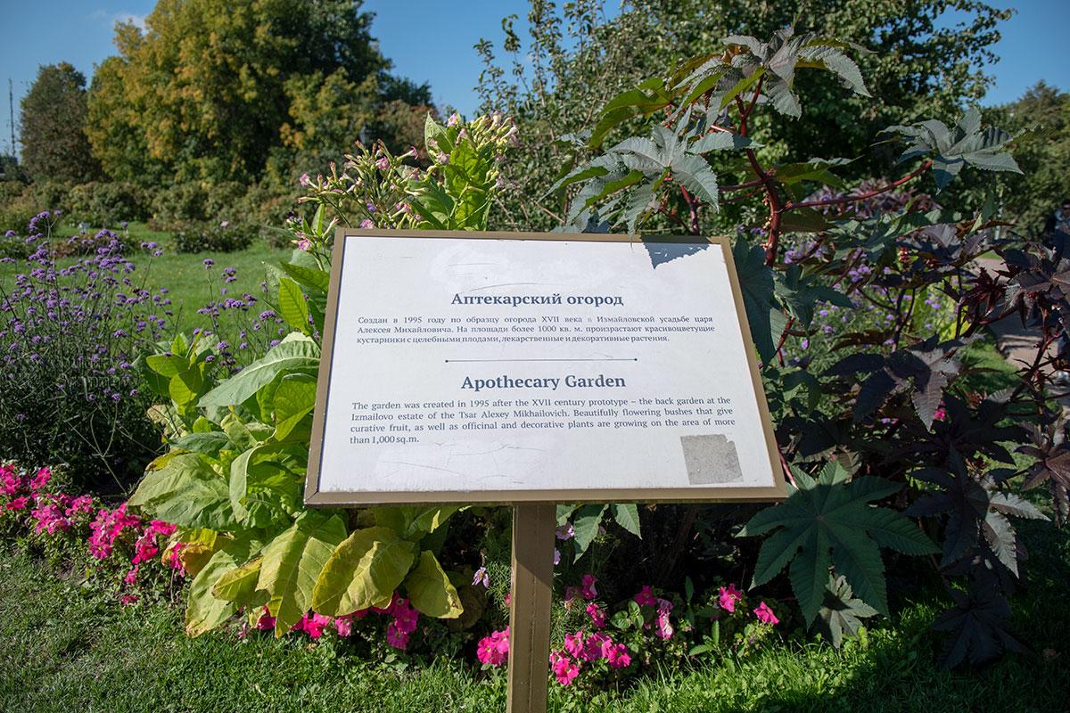 История создания Аптекарского огорода в Коломенском на информационном планшете изложена крайне лаконично, зато с английским переводом.