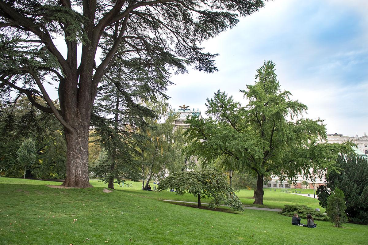 Вековые деревья различных пород и травянистые лужайки отличают венский парк Бурггартен от большинства других мест отдыха.