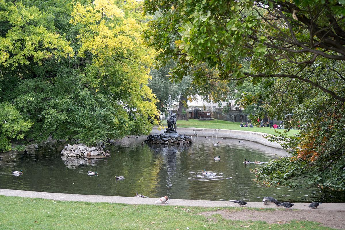 Неправильной формы искусственный пруд в центральной части Бурггартена значительно дополнил его декоративную привлекательность.