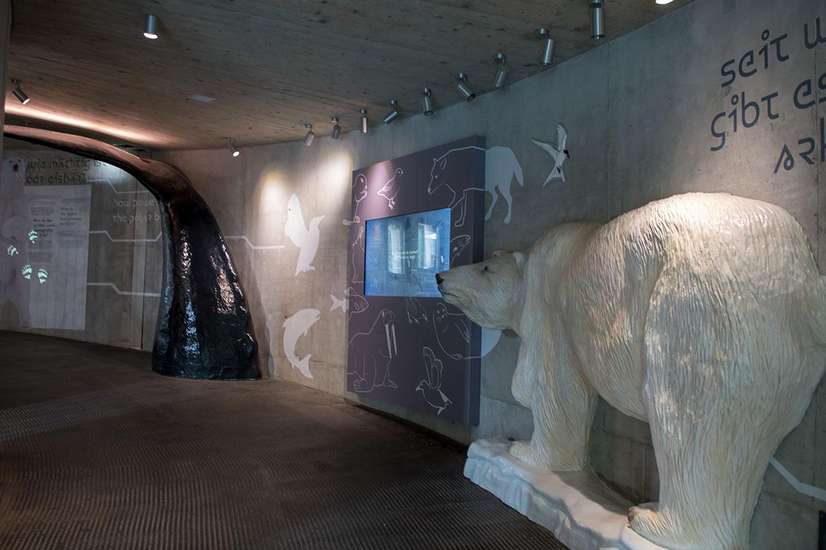 Арктическую галерею зоопарка Шенбрунна украшают настенные рисунки обитателей высоких широт, здесь же статуя белого медведя.