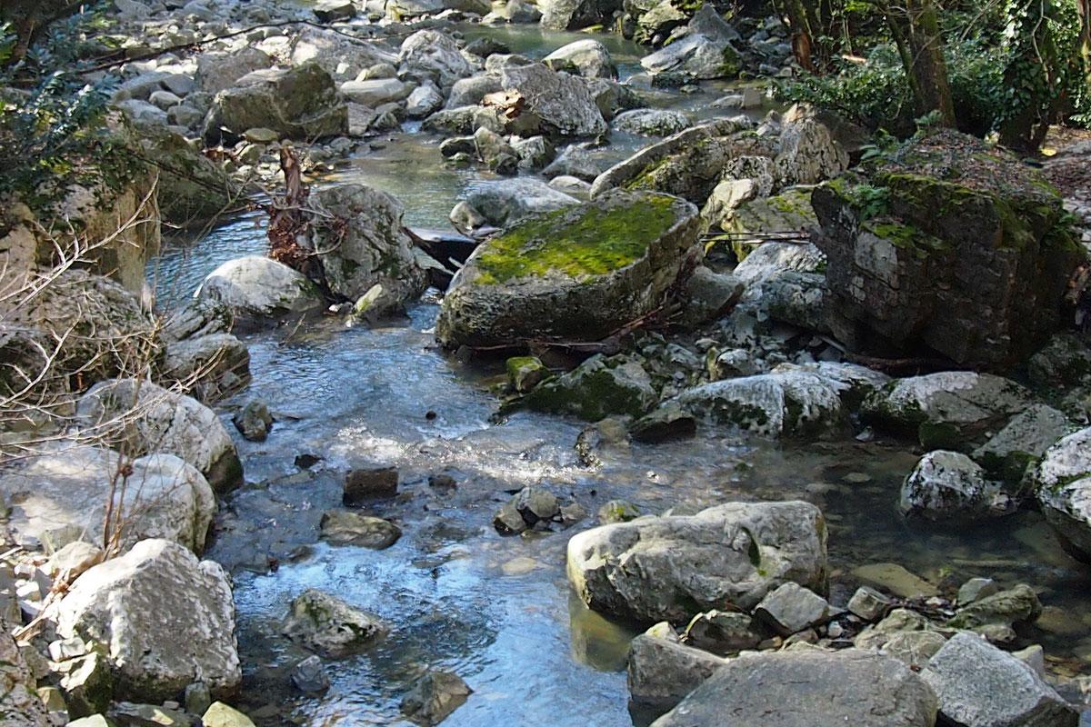 Как и многие горные реки, родительница Агурских водопадов большей частью проходит в скальном массиве, русло изобилует каменными глыбами.