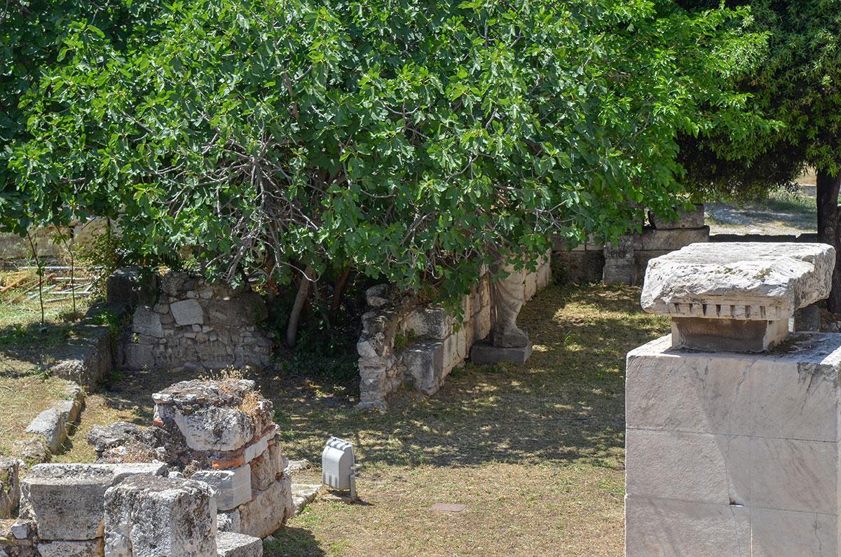 Некоторые экспонаты, выставленные на территории Библиотеки Пантаинос, свидетельствуют о наличии художественной мастерской.