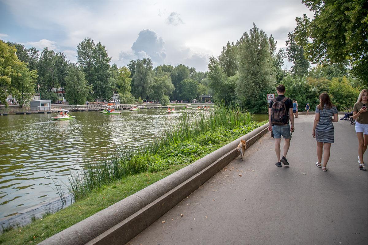 Самый большой водоем Парка Горького и окрестностей, Голицынский пруд, сохранил часть естественных берегов, что особенно привлекает сюда посетителей.