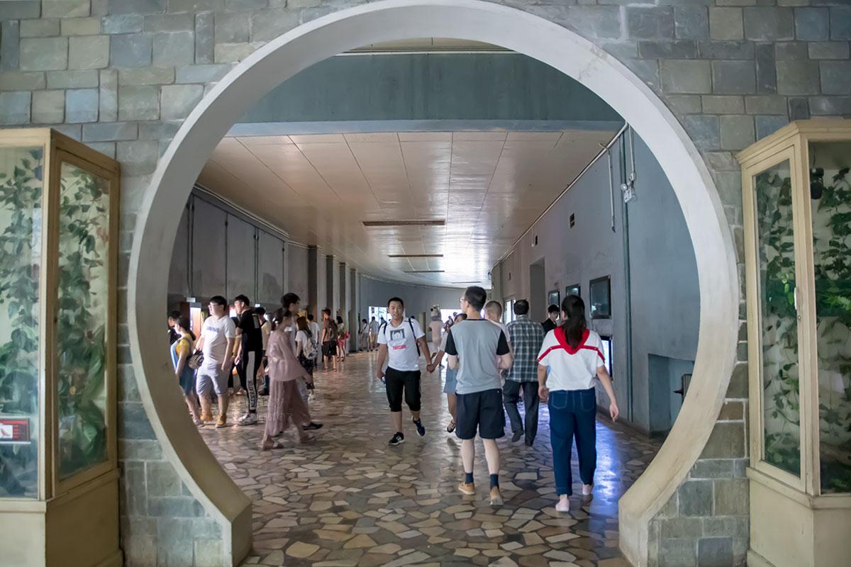 Среди посещающих террариум пекинского зоопарка наблюдается явное преобладание уроженцев Китая, но надо помнить о их численности.