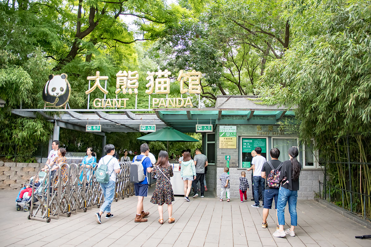 Посещая пекинский зоопарк, необходимо приобретать не только билет на вход, но и доплачивать за посещение некоторых павильонов.