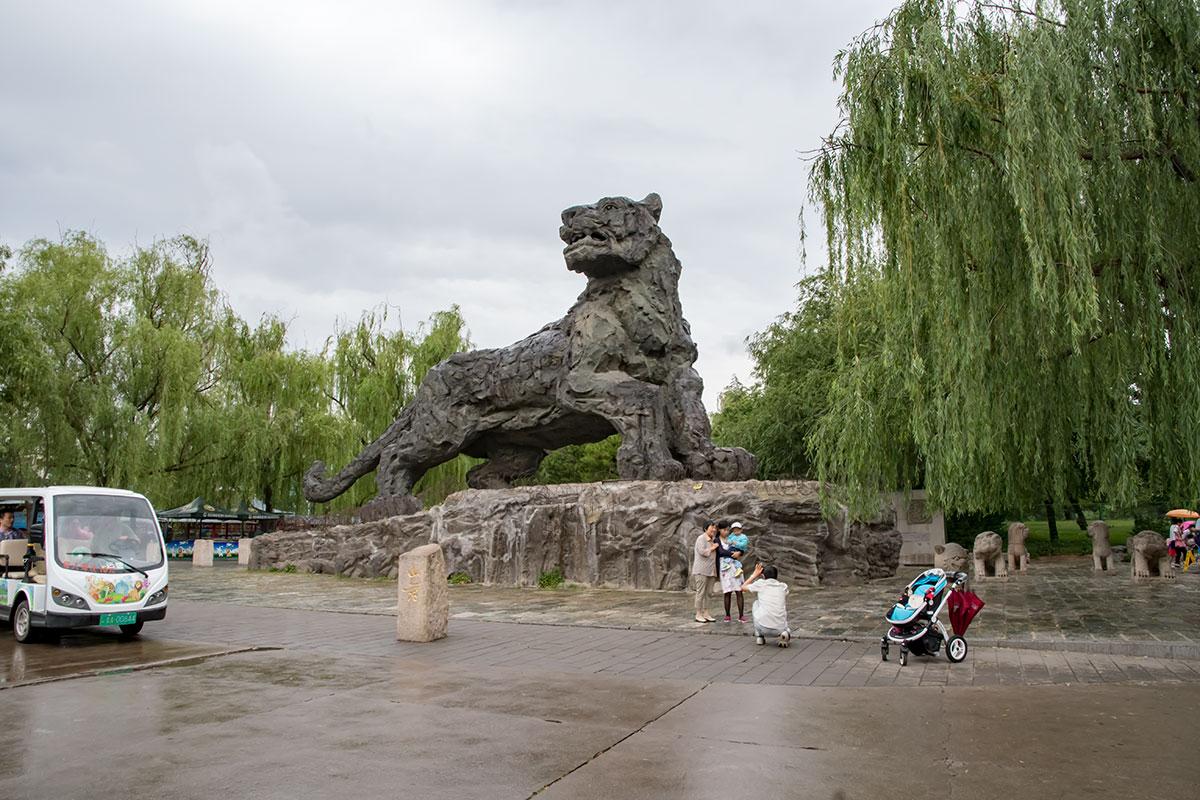 Гигантский монумент тигра на выходе из павильона кошачьих пекинского зоопарка – популярное место для фотографирования посетителей.