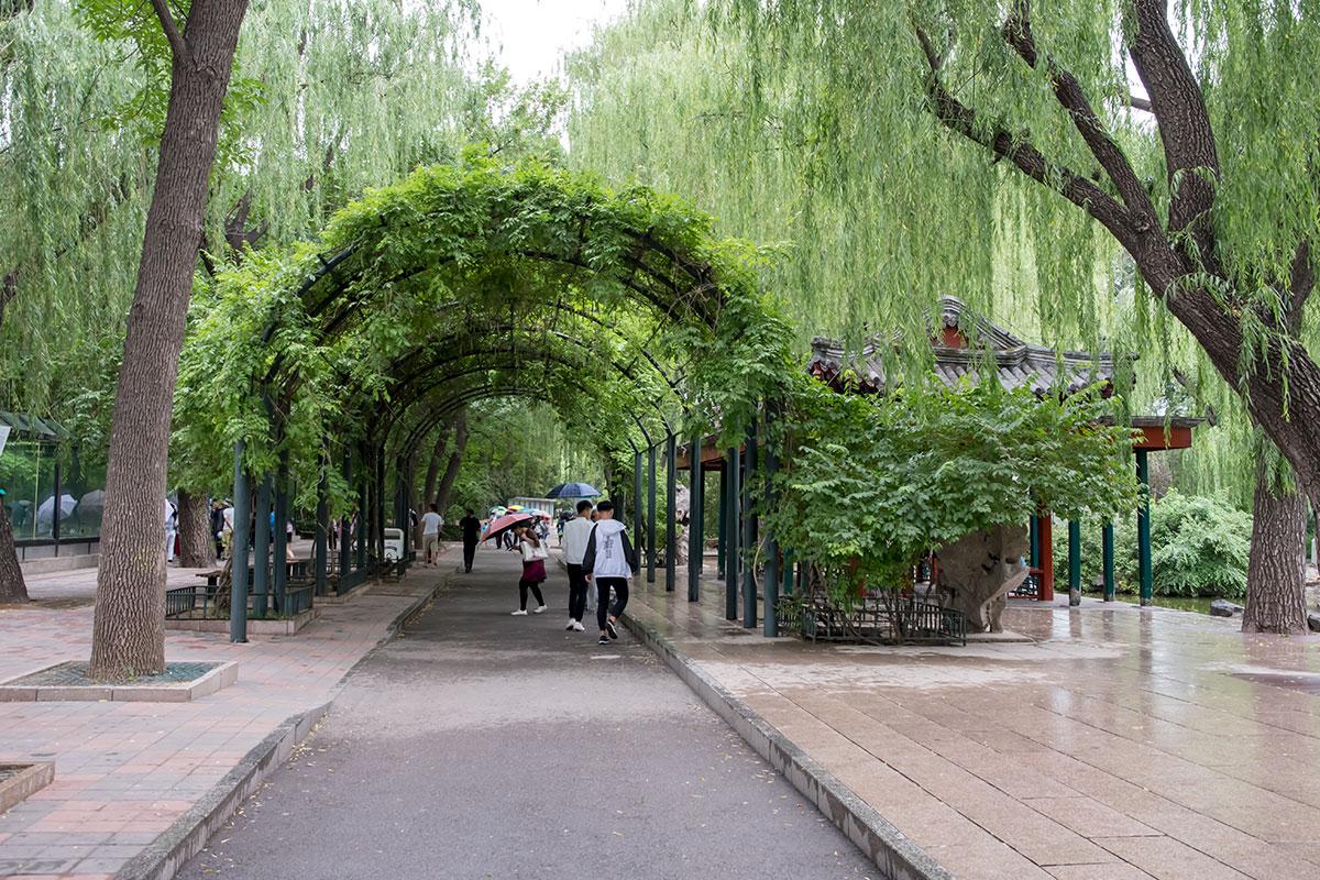 Оформлению обширной территории пекинского зоопарка могут позавидовать многие продвинутые садово-парковые ансамбли.