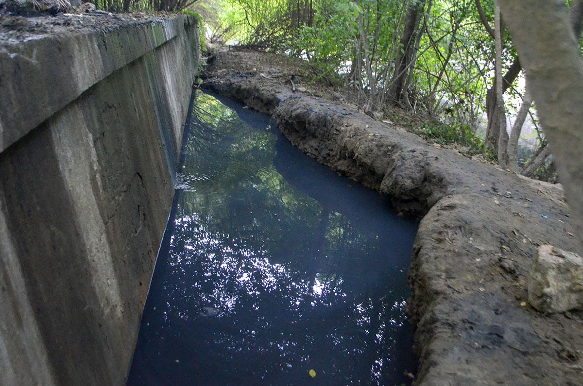 Постоянно текущая вода из скважины на Агурских сероводородных источниках не вредит окружающей растительности.