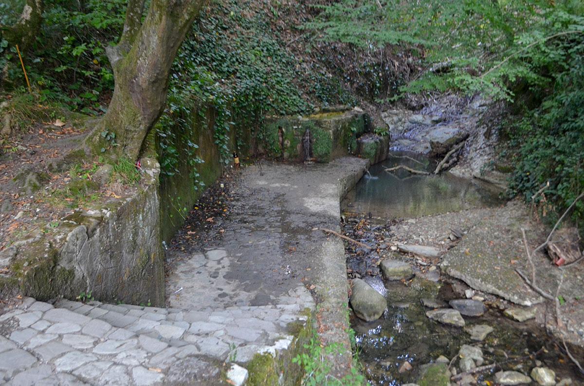 Агурские сероводородные источники имеют несколько проявлений, возле мостовых конструкций находится наименее концентрированная по насыщенности газом вода.