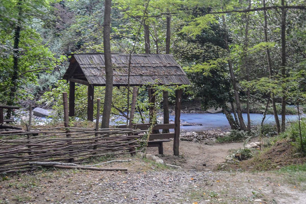 По пути на Агурские сероводородные источники туристы посещают Пикниковую поляну, где можно посидеть и отдохнуть.