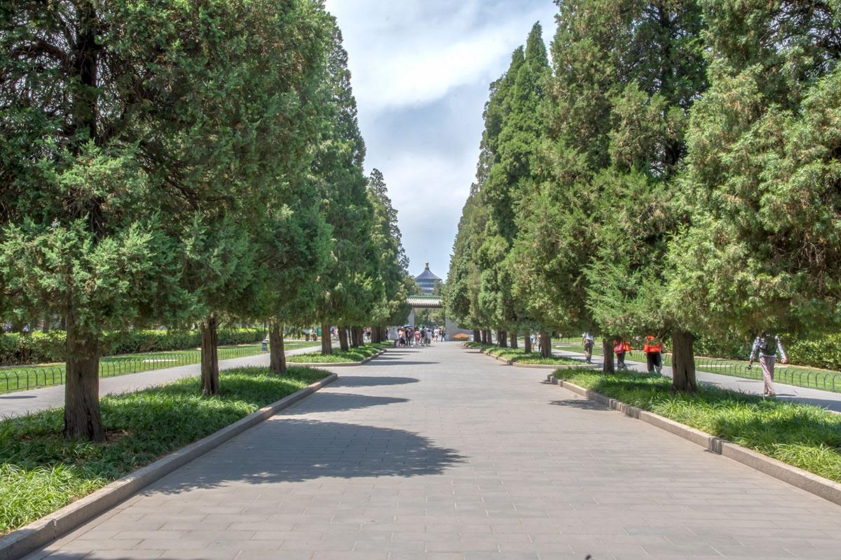 Религиозный комплекс Храм Неба превосходит по площади величайшие в мире дворец Запретный город и площадь Тяньаньмэнь, вместе взятые.