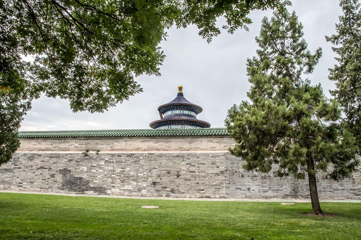 Хотя бы верхушка высокой башни Храма урожая видна с любой точки территории Храма Неба и даже из-за ограждающих стен.