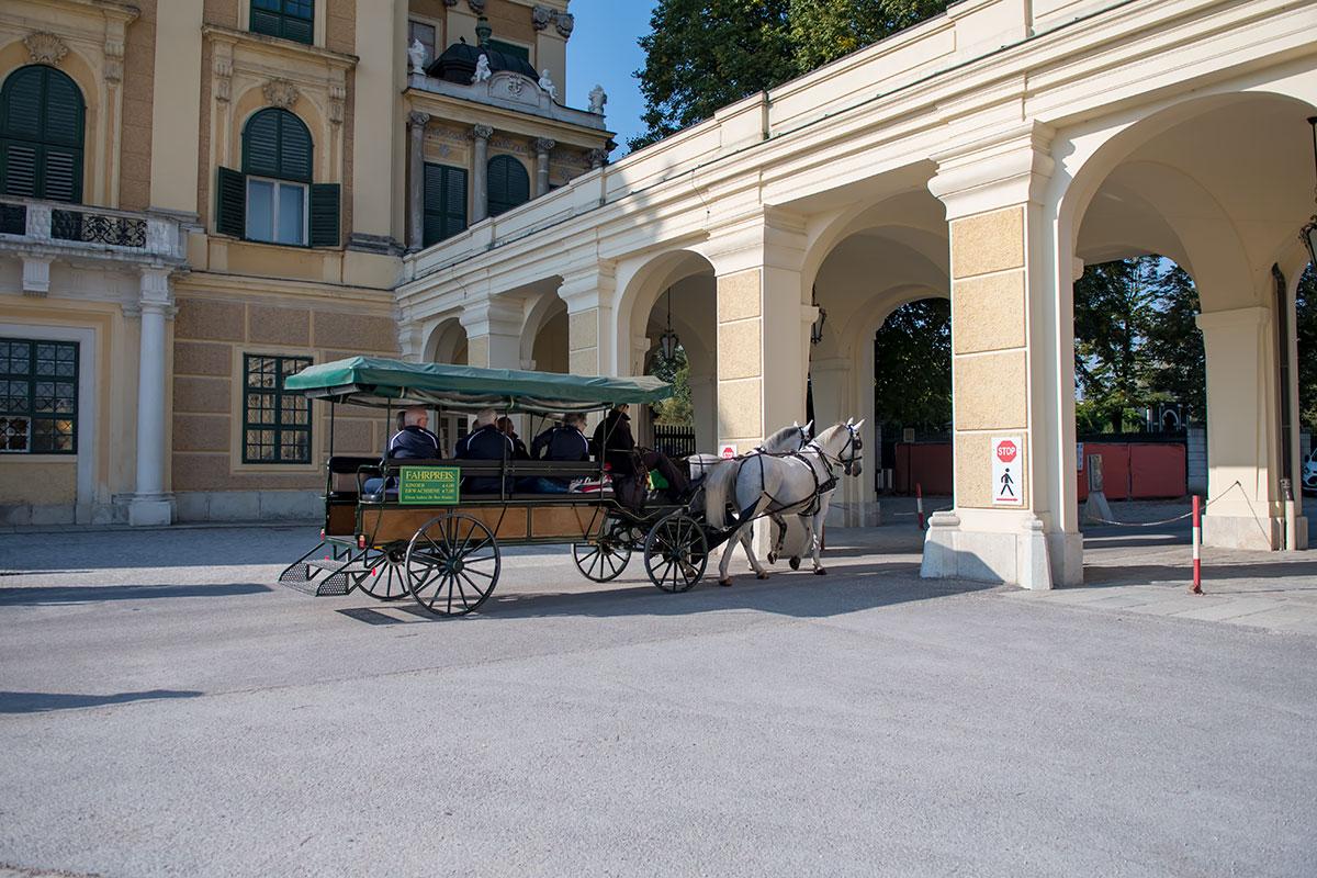 Некоторые обзорные экскурсионные маршруты на специальных туристических повозках включают в программу и посещение музея карет.