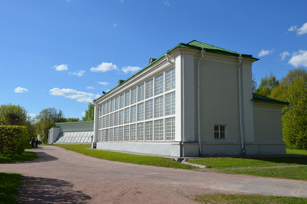 Боковыми флигелями Американская оранжерея напоминает спортивный зал для волейбола общеобразовательной школы советского периода.