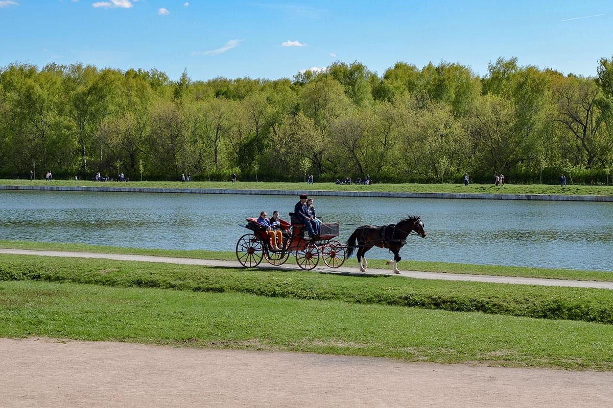 Поездки в старинном конном экипаже по набережной Дворцового пруда и территории усадьбы Кусково популярны у посетителей достопримечательности.
