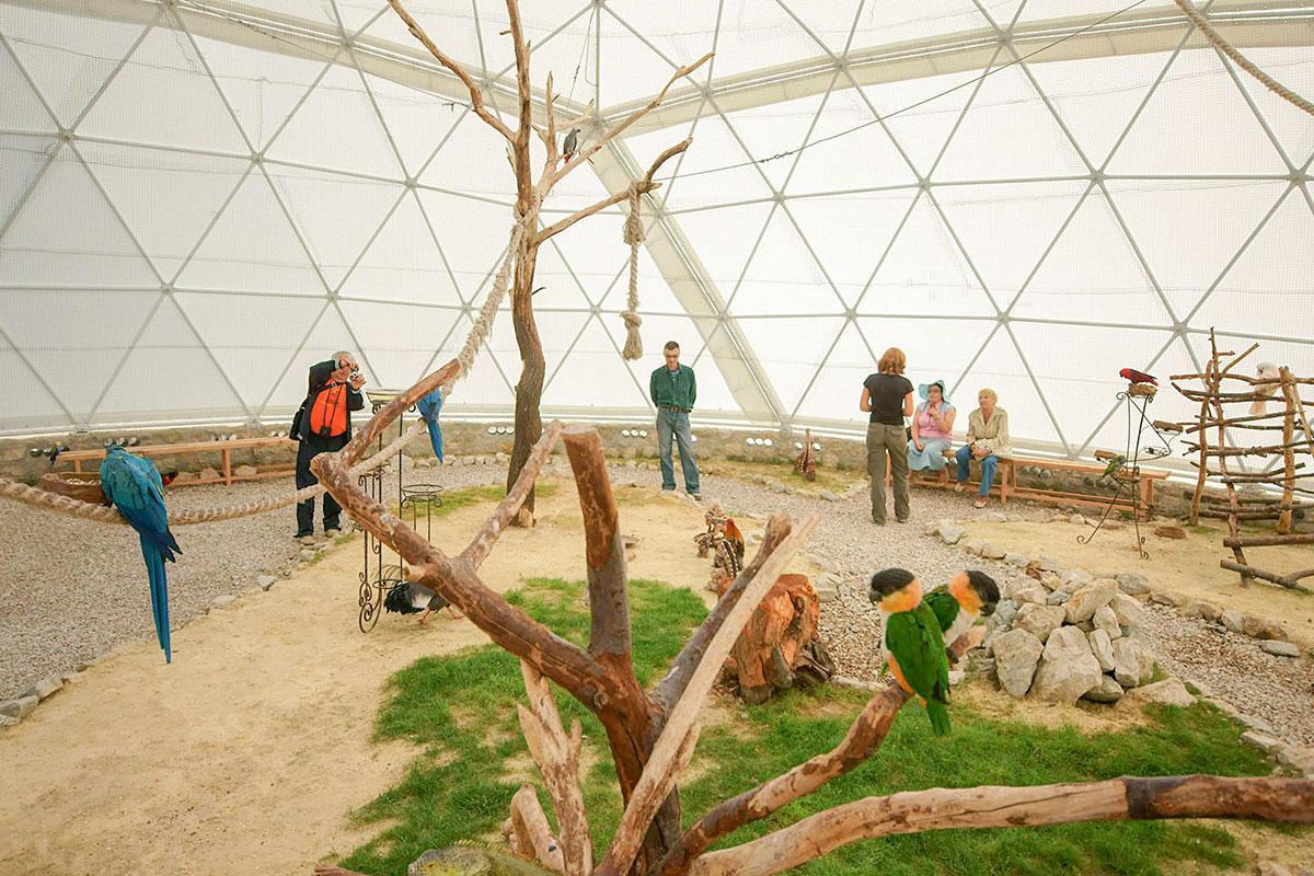 Полусферическая каркасная палатка Динотерия в Коктебеле – не вольер или клетка, это помещение для совместного нахождения питомцев и зрителей.