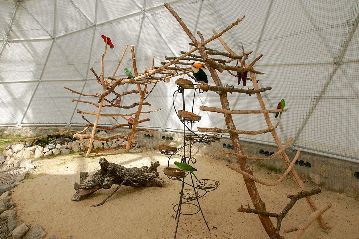 Для оборудования выставочного объема Динотерий в Коктебеле использует самый незамысловатый материал, от древесины и камней до декоративных стоек.