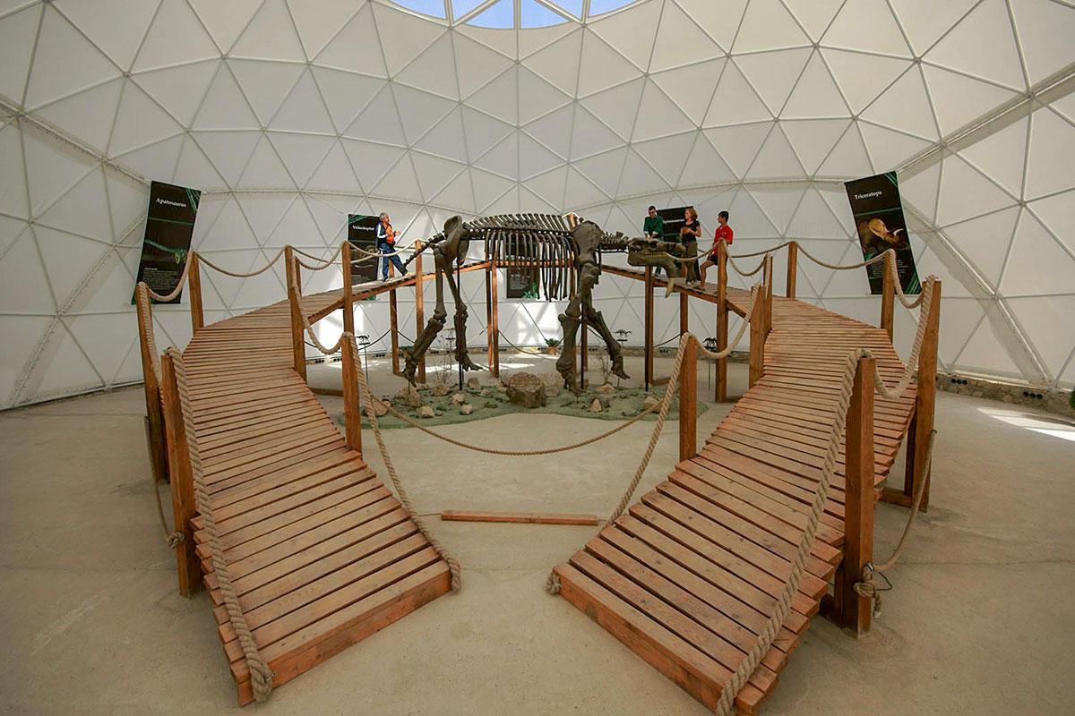 Выставочными павильонами Динотерия в Коктебеле служат полусферические каркасные палатки, одна оборудована мостиком для обозрения огромного скелета.