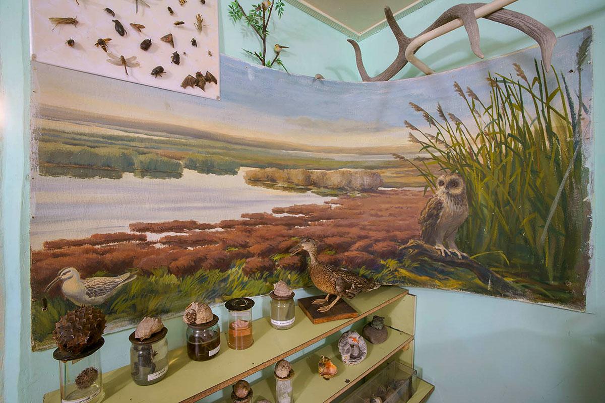 Различными изобразительными средствами краеведческий музей поселка Советское показывает природу восточного Крыма, прилегающего к озеру Сиваш.
