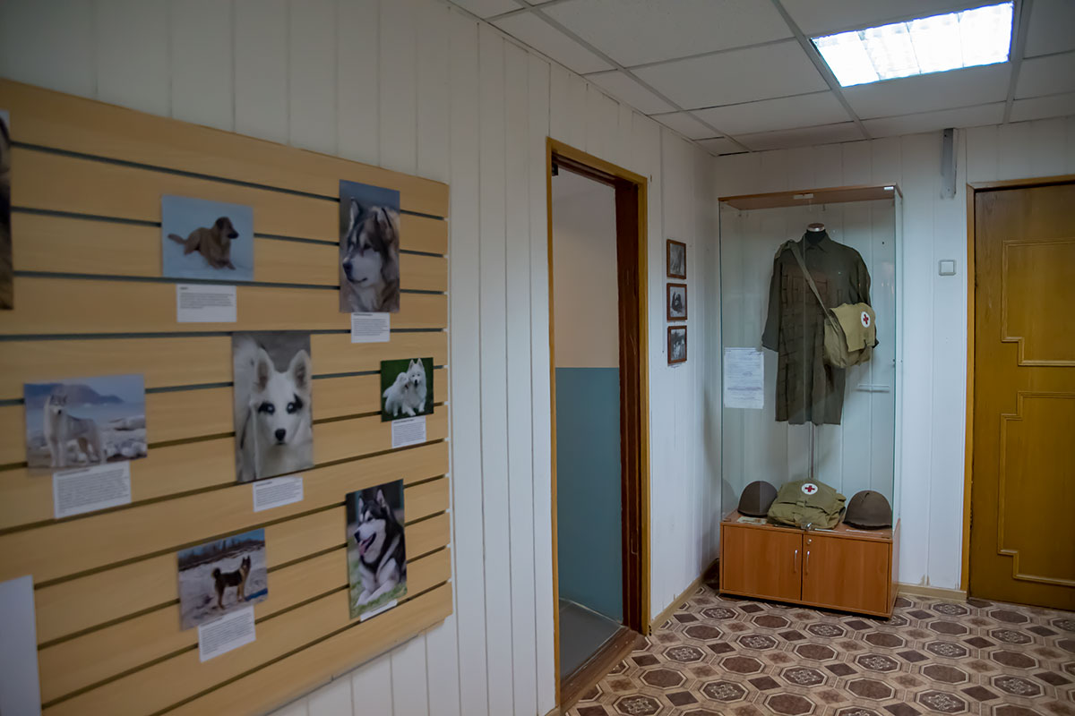 На примере подвального коридора можно оценить качество подготовки выставочного пространства, типичное для московского Музея Собаки.