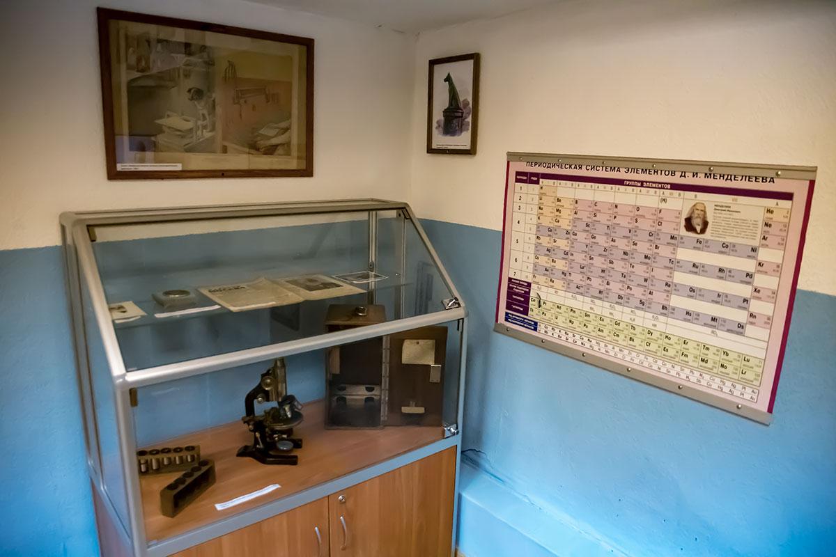 Какой-то из добровольных дарителей Музея Собаки не пожалел раритетного микроскопа с футляром и принадлежностями, лишь бы наполнить экспозицию.
