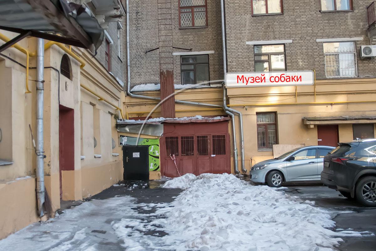 Московский частный Музей Собаки оборудовал выставочные залы в подвальном помещении обычного жилого дома, напротив музея имени Ферсмана.
