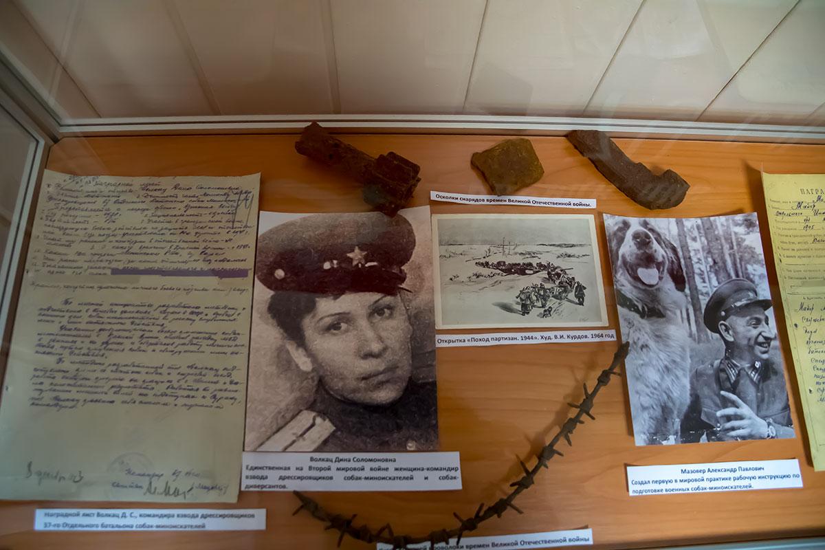 Отдельную витрину Музей Собаки посвятил знаменитым кинологам Красной армии, некоторые из которых прошли со своими питомцами на Параде Победы.