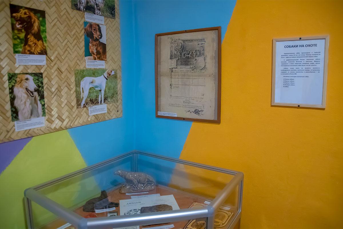 Свои выставочные экспонаты Музей Собаки собрал среди единомышленников по увлечению, наполнив кое-как шесть тематических залов.
