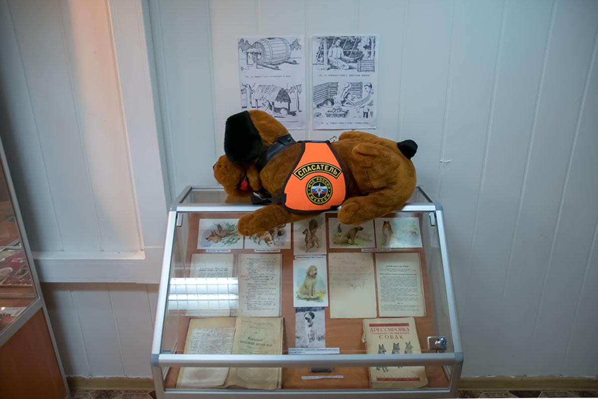 На стенде со старинной методической литературой по собаководству Музей Собаки поместил плюшевого пса, явно подаренного подразделением МЧС.