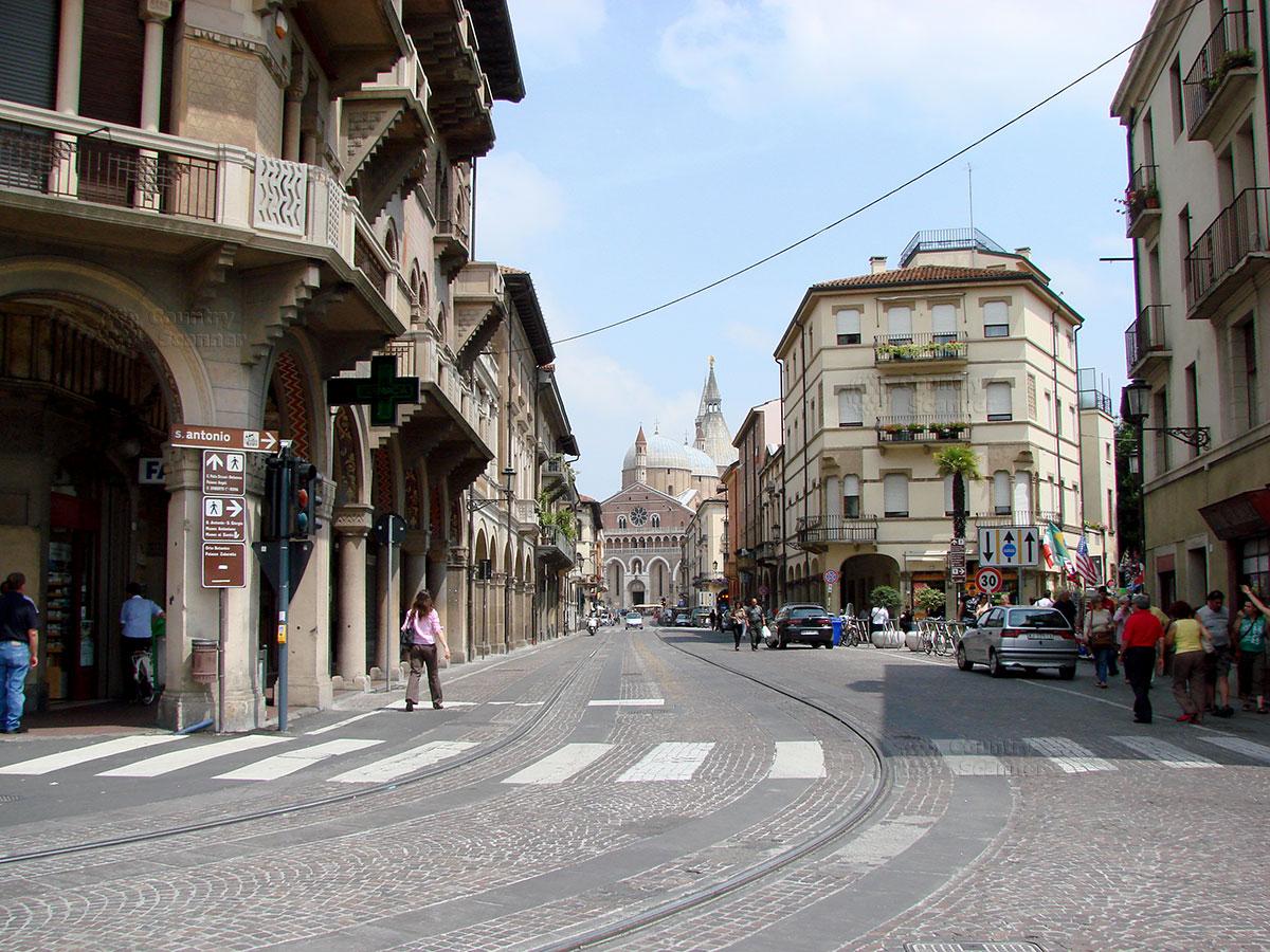 Базилика святого Антония Падуанского. Улица