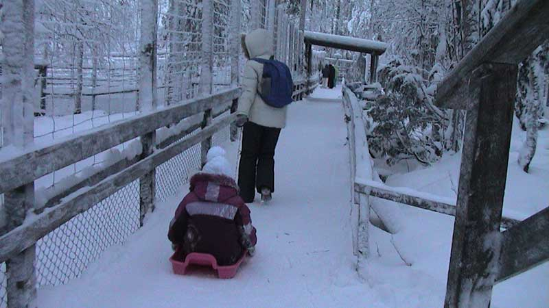 Финляндия. Арктический зоопарк
