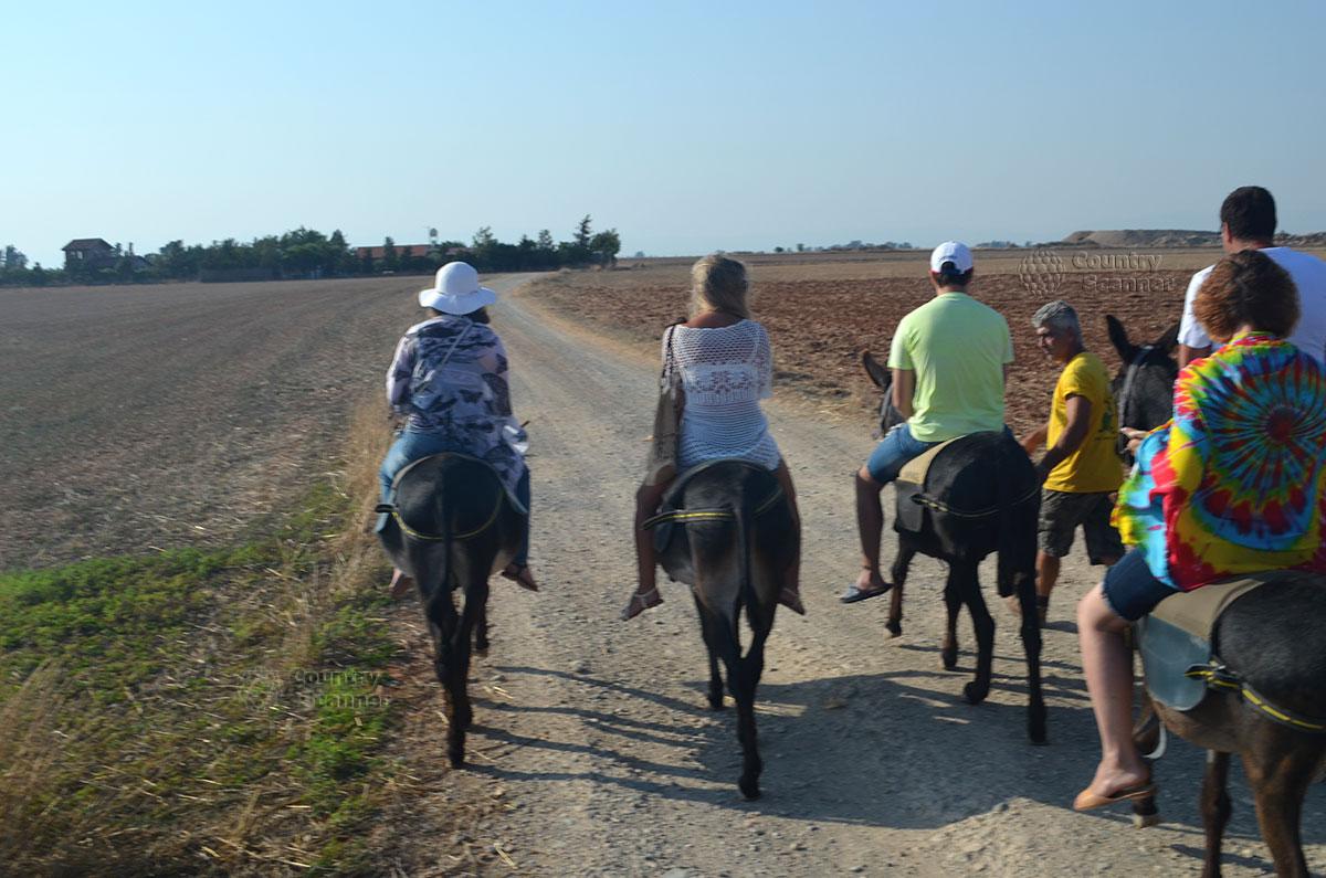 Кипр. Сафари на осликах. Группа едет по дороге.